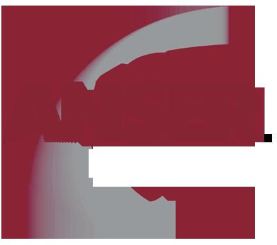 ANSER's Logo